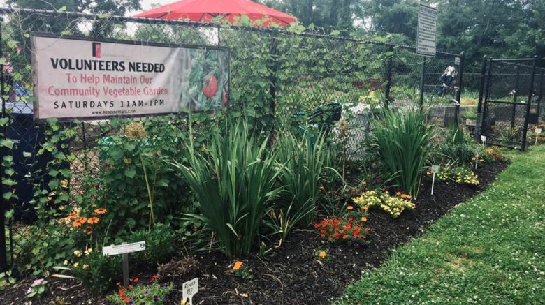 Garden Volunteers and Donations Sought – Midtown Urban